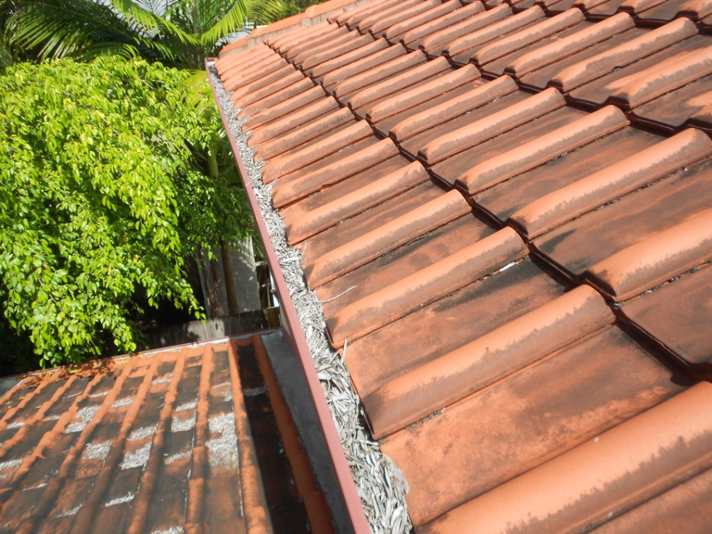 roof pressure cleaning cairns